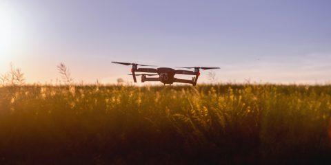 DL Semplificazioni e agricoltura. Sfide e opportunità delle nuove tecnologie