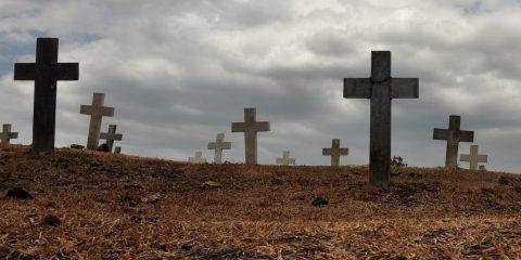 Cimitero dei feti a Roma, la facile soluzione: nome di fantasia sulle croci al posto di quello delle madri