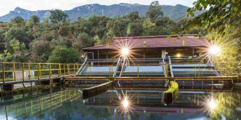 """Aruba investe nell'idroelettrico e accelera il processo """"carbon negative"""""""