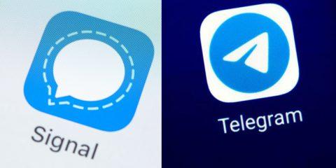 Fuga da WhatsApp. Tra Telegram e Signal qual è l'app migliore per la privacy?