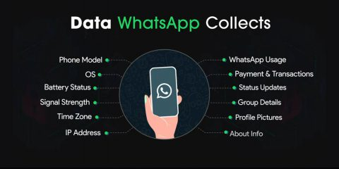 WhatsApp, in Europa no condivisione dati grazie al GDPR. Ma in futuro potrebbe succedere