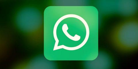 """WhatsApp: """"Dal 15 maggio se non accetti la privacy policy non leggi e invii messaggi"""""""