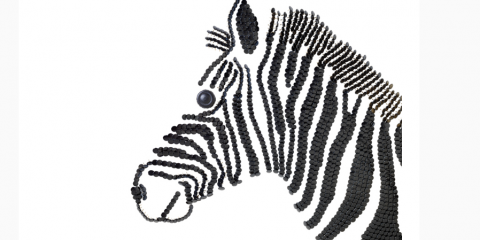 Il 25 febbraio 1895 in Sudafrica è inaugurata la prima riserva naturale al mondo