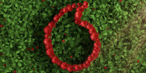 Vodafone, dal primo luglio la rete europea alimentata da elettricità al 100% green