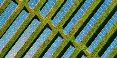 """ENEL ospita """"Grid Futurability"""", l'evento Pre-COP26"""